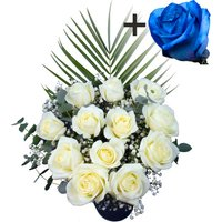 A single Blue Rose surrounded by 11 White Roses