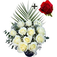A single Bright Red Freedom Rose surrounded by 11 White Roses