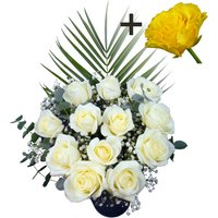 A single Yellow Rose surrounded by 11 White Roses