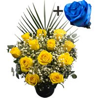 A single Blue (Dyed) Rose surrounded by 11 Yellow Roses