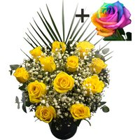 A single Happy Rainbow Rose surrounded by 11 Yellow Roses
