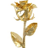 A 17Inch 24kt Gold Dipped Rose
