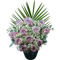 12 Lilac Roses