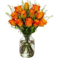 12 Orange Roses
