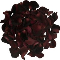 1 Jug of Black Rose Petals