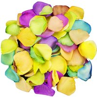 1 Jug of Happy Rainbow Rose Petals
