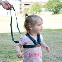 Safety 1st Harness & Rein Set (New)