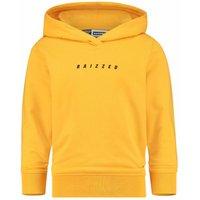 Raizzed! Jongens Trui – Maat 152 – Geel – Katoen/elasthan