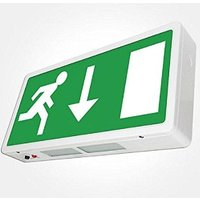Bright Source LED Emergency Exit Box   Down Arrow