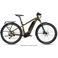 E-Bikes/E-Mountainbikes: Flyer  Goroc2 2.10 Vintage Brass  Black Matt 20.1Ah 2021 L