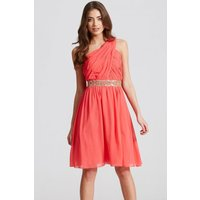 Little Mistress Coral Embellished Waist Mini Dress size: 16 UK, colour