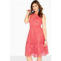 Little Mistress Daisy Guipure Lace Skater Dress size: 16 UK, colour: C