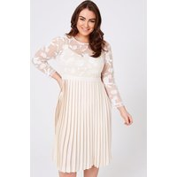 Little Mistress Curvy Ellis Buttercup Pleated Midaxi Dress size: 12 UK