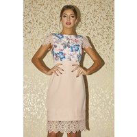 Paper Dolls Solna Pink Floral-Print Lace-Trim Dress size: 16 UK