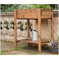 Product photograph showing Rspb Herb Planter Table