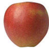Äpfel Red Free