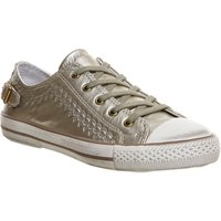 Ash Virgo Lo Sneaker Gold Iron