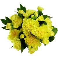 Yellow Carnations - 12 stems
