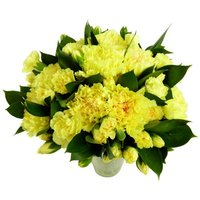 Yellow Carnations - 18 stems