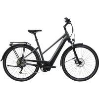 E-Bikes>E-Bikes trekking: Pegasus  Premio Evo 10 Lite 500 Wh Damen Trapez  2020 45cm