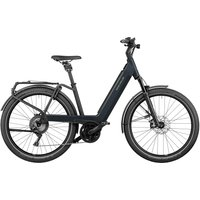 : Riese & Müller  Nevo3 GT touring 625 Wh Damen  56 cm