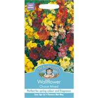 Robert Dyas Mr Fothergills Wallflower Choice Mixed Seeds