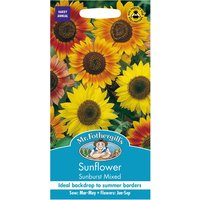 Robert Dyas Mr Fothergills Sunflower Sunburst Mixed Seeds