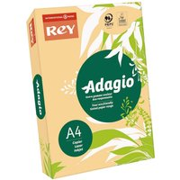 Adagio Ream of Bright Coloured Copier Paper A4 80gsm 500 Sheets Salmon, Salmon