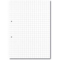 A4 Loose Leaf Paper 10mm Square Ruled 2 Hole Punched, 2 Hole Ream