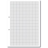 A4 Loose Leaf Paper Graph ruled 2 10 20, 2 Hole Punched