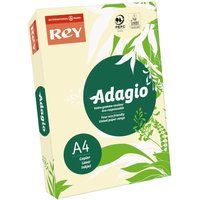 Adagio Colour Selection Card A4 160gsm 250 Sheets, Ivory