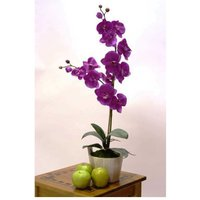 Double Cerise Orchid Designer Lifelike Floral Display