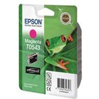 Epson T0543 - Print cartridge - 1 x pigmented magenta