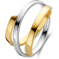 Gouden ring 87.0073.1702