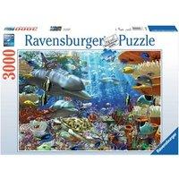 Ravensburger Leven in het koraalrif