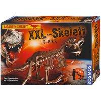 KOSMOS XXL Skelett T-Rex