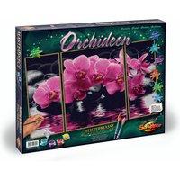 Malen nach Zahlen Orchideen
