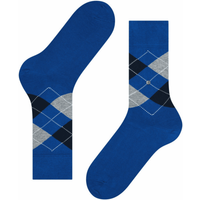 King Socks - Blue and Navy