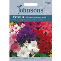 Pack of Special Grandiflora Mixed F1 Petunia Seeds