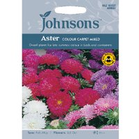 Pack of Aster Colour Carpet Mixed Seeds
