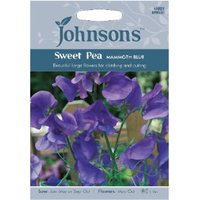 Pack of Mammoth Blue Sweet Pea Flower Seeds