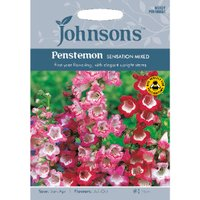 Pack of Penstemon Sensation Flower Mix