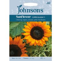Pack of Copper Queen F1 Sunflower Seeds
