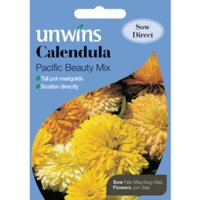 'Calendula Pacific Beauty Mixed Seed Packet - Yellow