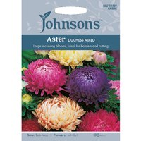 Pack of Aster Duchess Mixed Seeds