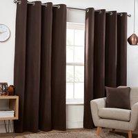 Pure Cotton Eyelet Curtains - Dark Brown / 229cm