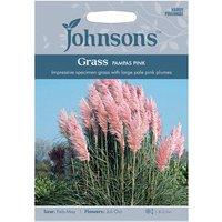 Grass Pampas Pink