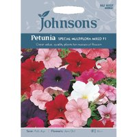 Pack of Special Multiflora Mixed F1 Petunia Seeds