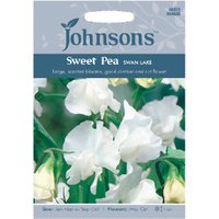 Pack of Swan Lake Sweet Pea Flower Seeds