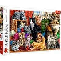 Trefl Feline Meeting Puzzle - 1000pcs.